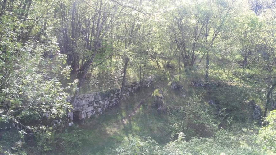 dolina_basovizza_2017_005.jpg